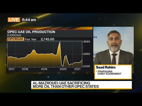 OPEC+ Abandons Meeting on Output