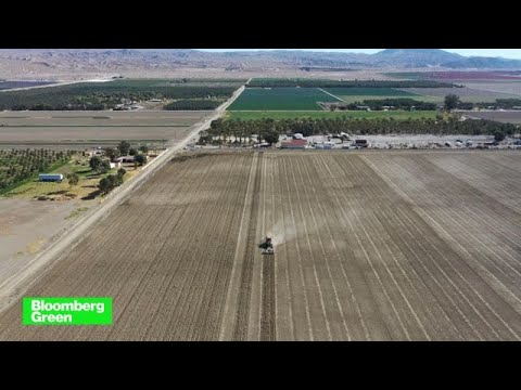 Bloomberg Green: Is Sustainable Agriculture Part of the Climate Solution?