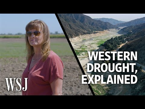 Why the Western Drought Will Have Major Ripple Effects | WSJ