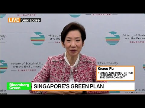 Singapore Is Committed to Lower Carbon Future, Minister Says