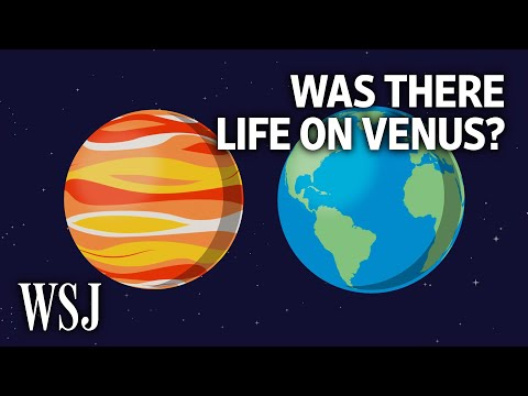 How Venus Fits Into the Search for Life Beyond Earth | WSJ