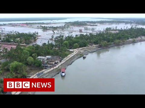 Why the world's largest mangrove forest is sinking - BBC News