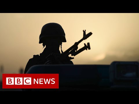 Let more Afghan interpreters resettle in UK, say ex-military chiefs - BBC News